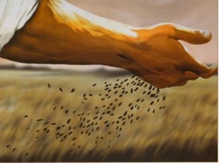 semeador 1